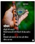 Sisham,Puplar, Neem, Jamun aur bhi ped