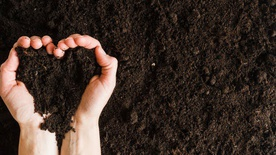 Organic Fertilizer for Plants and Vegetables